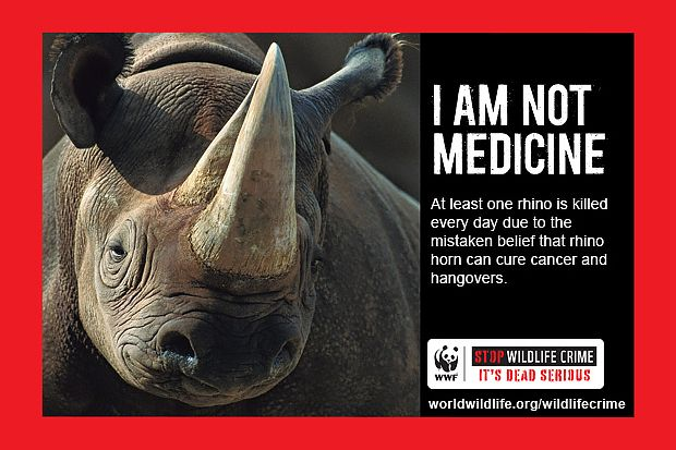rhino not meds